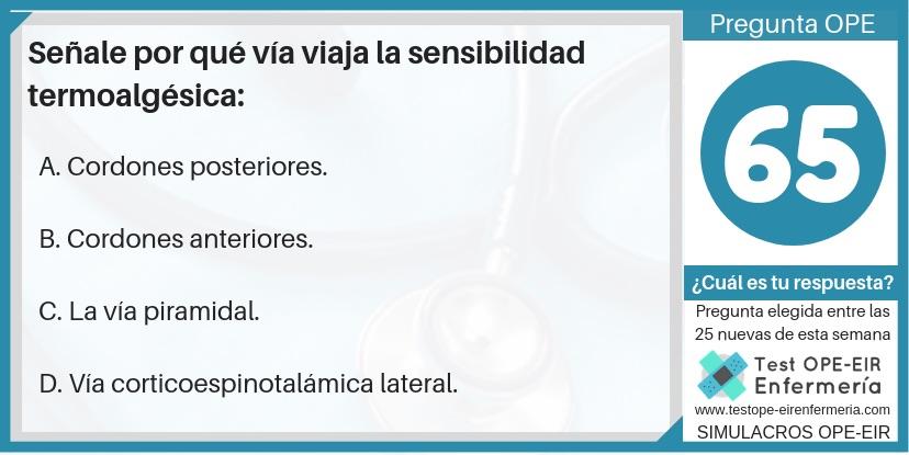 oposiciones de enfermeria sensibilidad termoalgésica pregunta