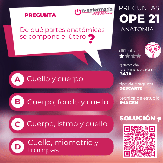 útero-opematronas-anatomía
