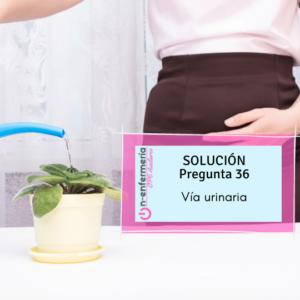 Vía urinaria-opetcae-nefro urología