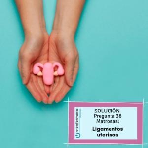 Solucion pregunta ope matronas 36 reproduccion humana