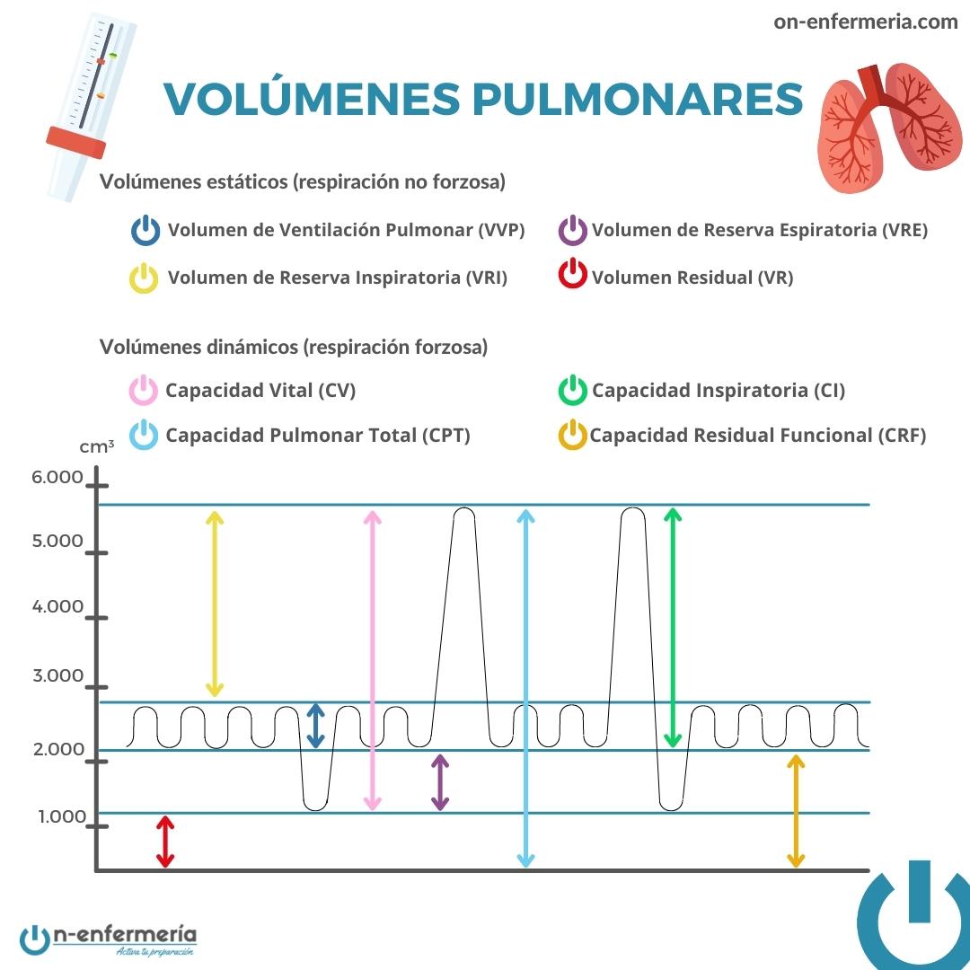 Infografía Volúmenes pulmonares - Aparato respiratorio