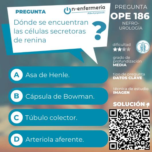 Pregunta examen OPE Enfermería nº 186 - Secreción renina, nefro-urología