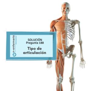 Solución nº188 Enfermería - Tipo de articulación