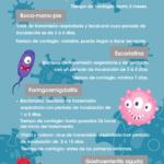 Infografía enfermedades infantiles infecciosas más frecuentes - temario procesos infecciosos OPE Enfermería y EIR