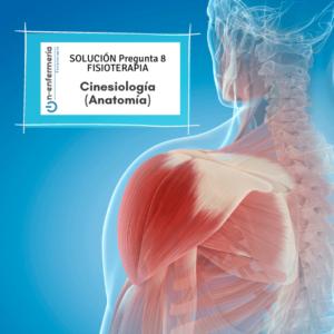 Solución fisioterapia nº 8 - Cinesiología