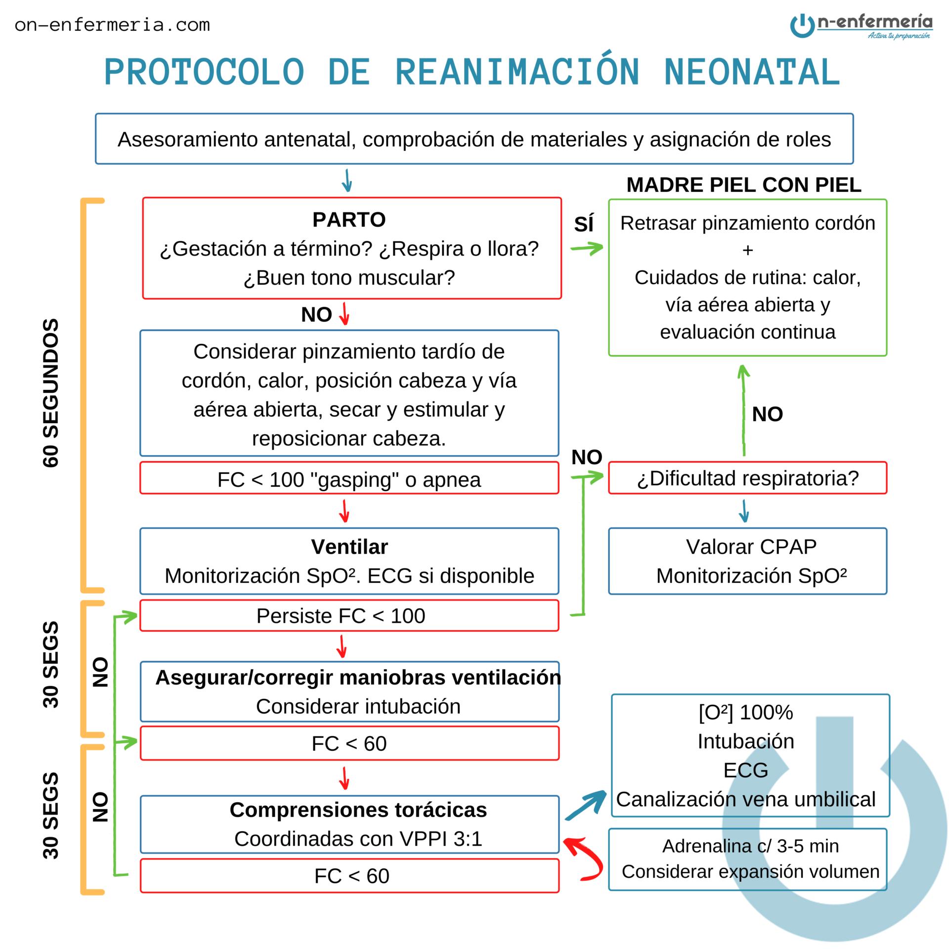 Infografía protocolo de reanimación neonatal