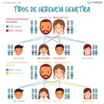 Infografía Tipos de herencia genética