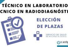 técnico en laboratorio asturias